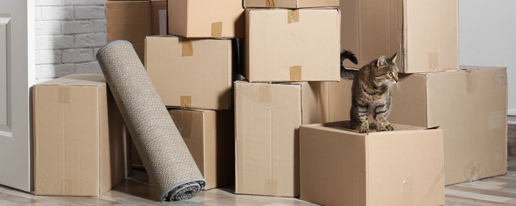 Moving House Services