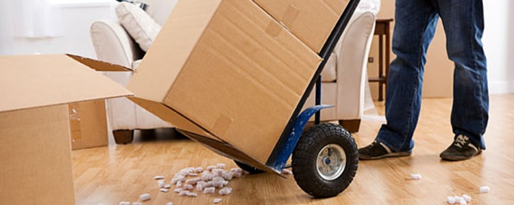 Moving House Service